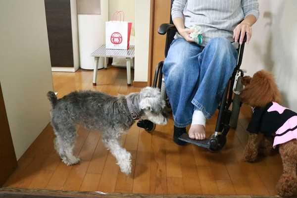 お客様から室内用車椅子をお借りしました